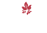 Due Terre Wines Logo